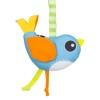 AR151-bird